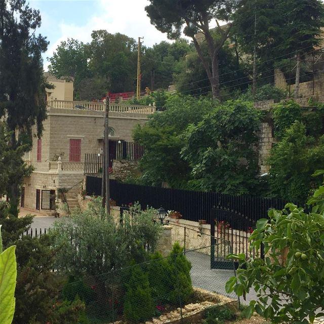 lebanon lebanese_nature trees lebanon_pictures lebanon_hdr beautiful... (Abey, Mont-Liban, Lebanon)