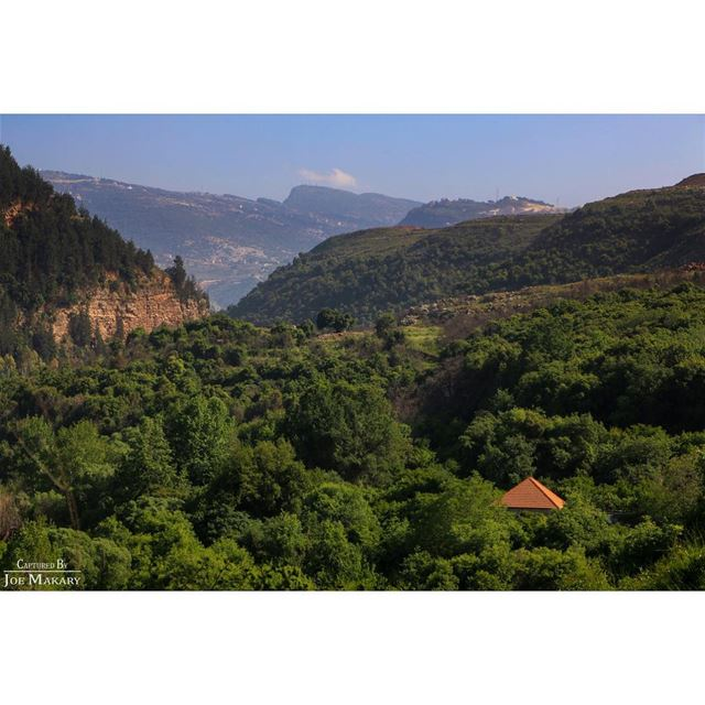 zgharta koura nature oldhouse trees hiking beautifullebanon ...