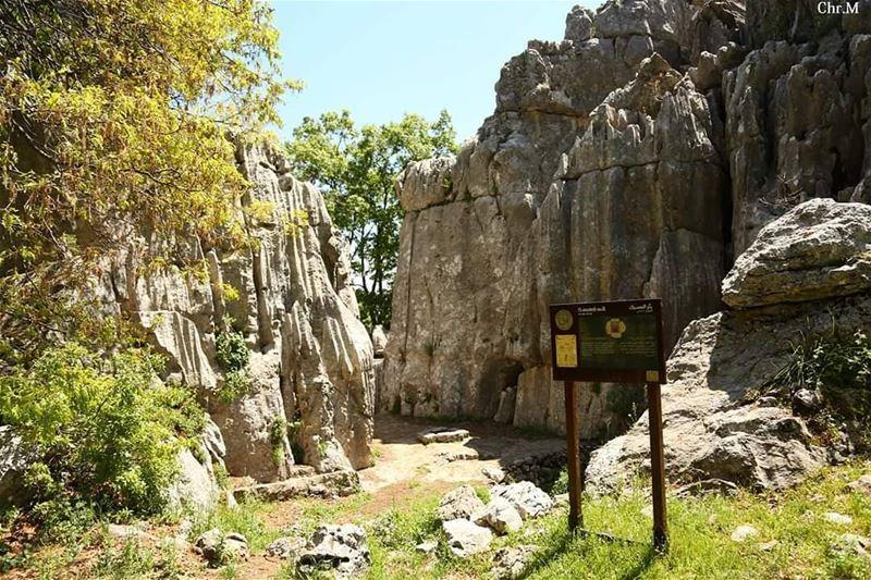 Another beautiful trail to explore. JabalMoussa unescomab unesco ...