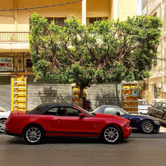 I'll race you to Friday!Happy Monday people✌🏻::::::::::::::::::::::::::: (Beirut, Lebanon)