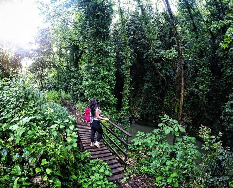 Grean Therapy Hiking RiverSide Mokhtara Chouf Lebanon... (El-Mukhtarah, Mont-Liban, Lebanon)