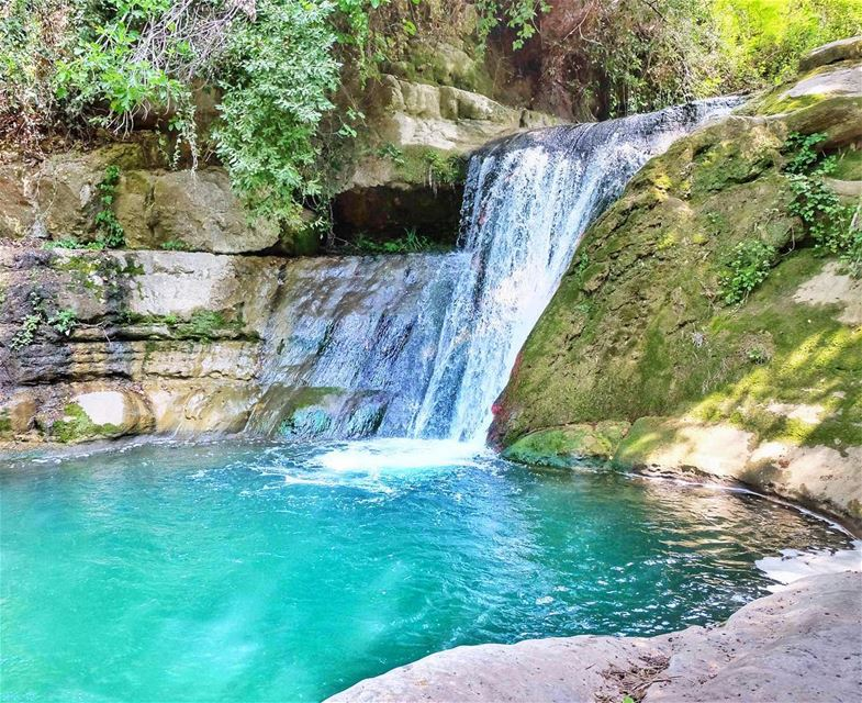 There is a voice that doesn't use words... just LISTEN!! (Chouf)