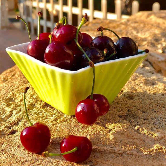 🤗 cherryseason homesweethome meetlebanon livelovesouthlebanon yummy ... (Ghaziyé, Al Janub, Lebanon)