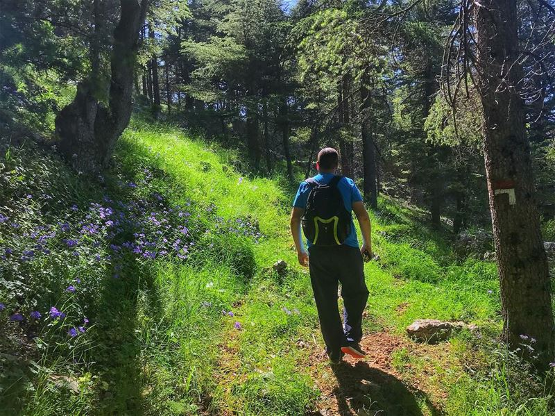 He is hiking for food🤔🍰! hungerManagement Join us this Sunday for a... (Hadath El-Jubbah, Liban-Nord, Lebanon)