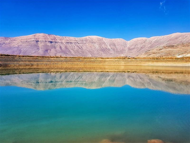 Reflections  reflection  mountain  lake  livelovebeirut  ig_lebanon ... (Bekaa Kafra)