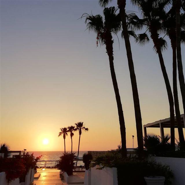What a sunset ! tourleb tourlebanon lebanonnature lebanoninstagram ... (Bamboo Bay)