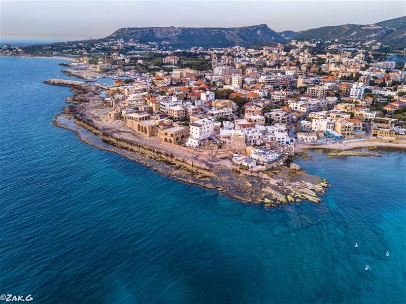 Botrys, the original name of Batroun which originated from Bater meaning... (Batroûn)