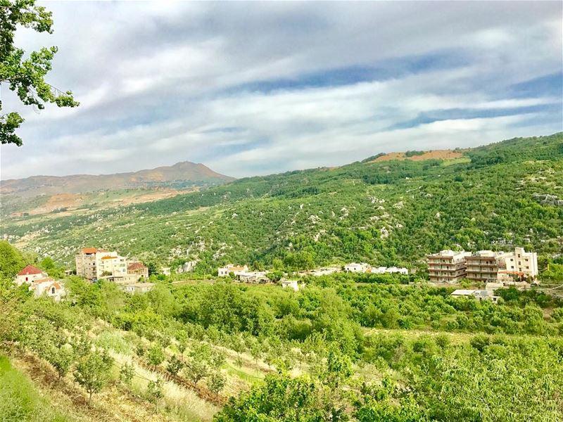 Those natural colors 😍💚•••••••••• goodmorning ... (Mayruba, Mont-Liban, Lebanon)