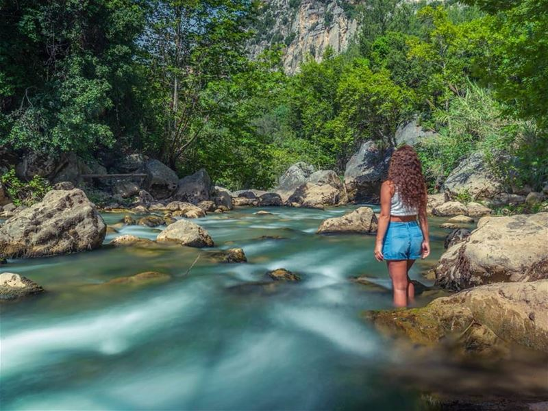 Immerse yourself in nature & like a river, go with the flow!📸 @jihad.asma (Nahr Ibrahim, Mont-Liban, Lebanon)