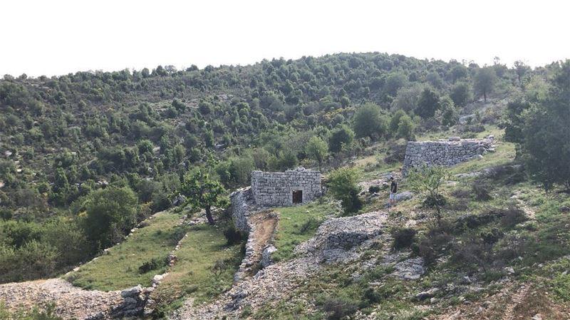 ~..S.E.E.K.E.R..~👩🏽🌾🏡🇱🇧 lebanon joy blessed fairytaillife ... (Lebanon)