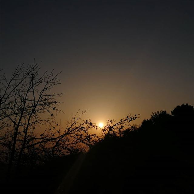 Every moment of light and dark is a miracle. sunset sunset_pics ... (Lebanon)