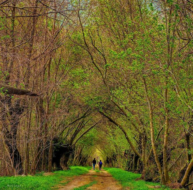 المغامرة الكبرى ليست خارج جسد الإنسان بل بداخله ... جد طريقاً للحب من خلال... (`Ammiq, Béqaa, Lebanon)