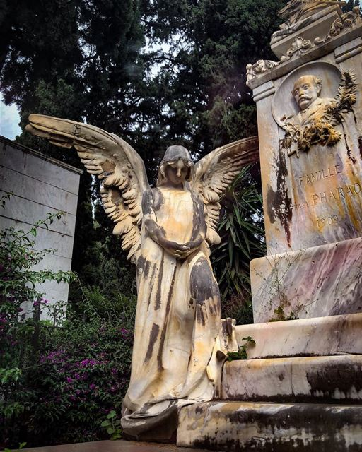 A walk through the cemetery......... cemetery  spiritual ... (Achrafieh, Lebanon)