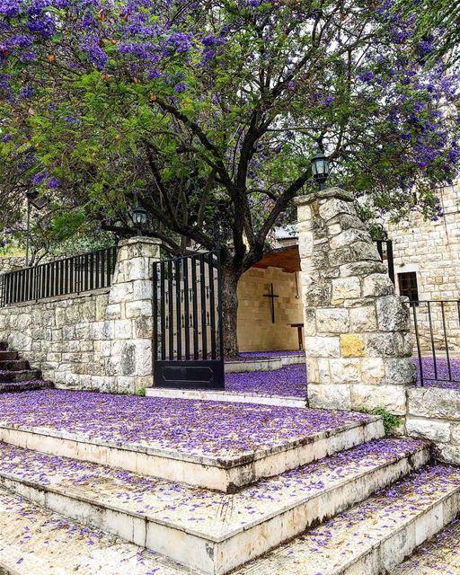Raje3ne zghire kenit ahyan l ossas......... heaven purplecarpet ...