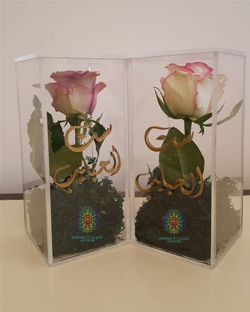 WishesInAPot  BestSeller  Plexi single rose box customized to say it on...