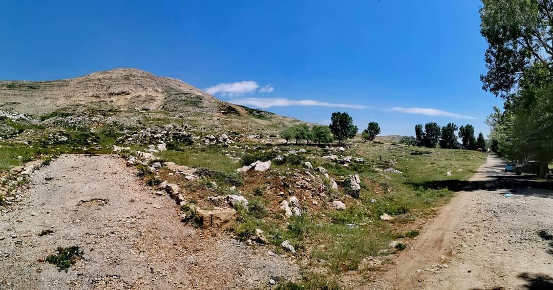 Silence isn't empty, it's full of answers... 🌾..... tworoads ... (Qanat Bakish, Mont-Liban, Lebanon)