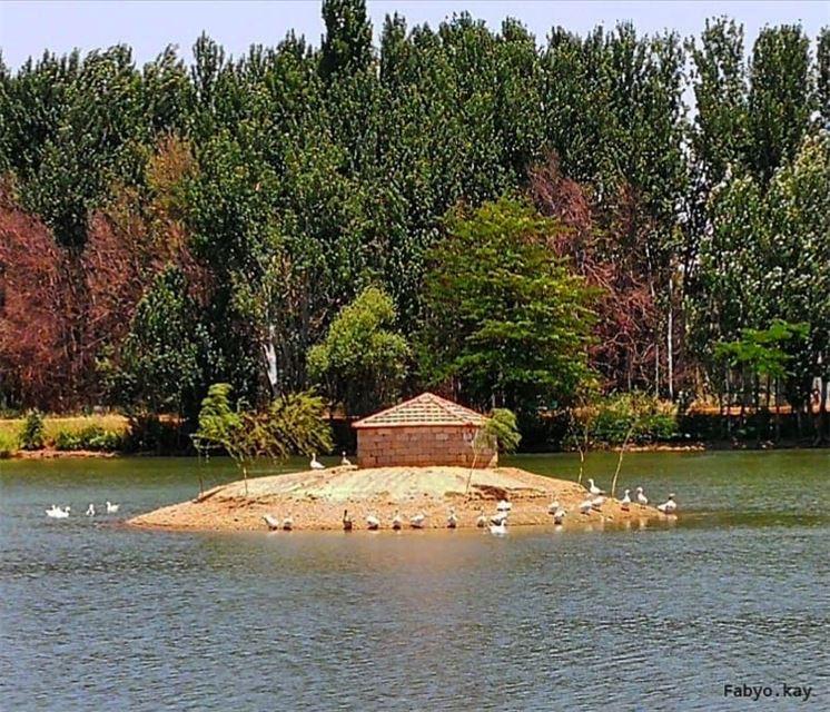 libanon taanayel lake trees naturelovers bekaa viewbug travelinglebanon... (Deïr Taanâyel, Béqaa, Lebanon)
