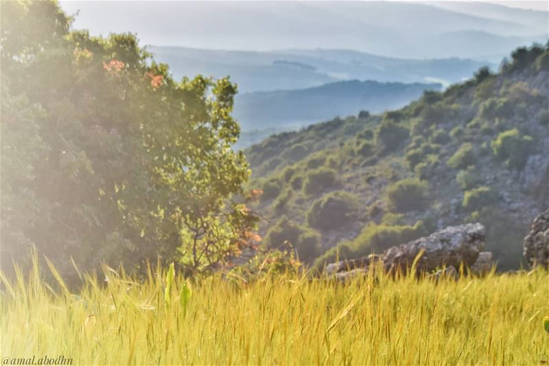 العبيد فقط يطلبون الحرية،، الأحرار يصنعونها 👌👌 .... lebanon ... (Hasbaya District)