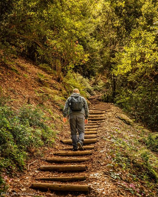The journey of a thousand miles begins with one step. @eliasksaadeh nikon... (Chouwen)
