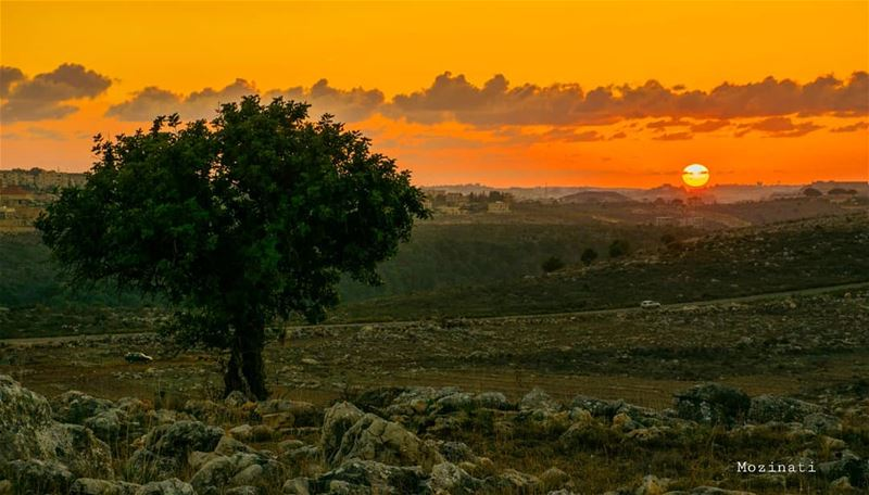 The best things in life are the people you love, the places you have seen... (Rumin, Al Janub, Lebanon)