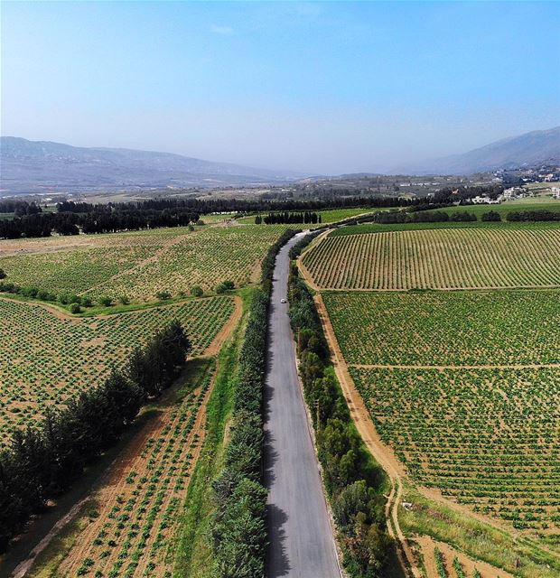 • My Happy Road • 🎈 luna_drone mavicair mavic drone ... (West Bekaa)