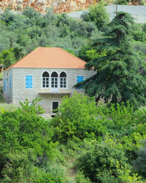 A sight I never get tired of... in the end, all we have left is our... (Hâqel, Mont-Liban, Lebanon)