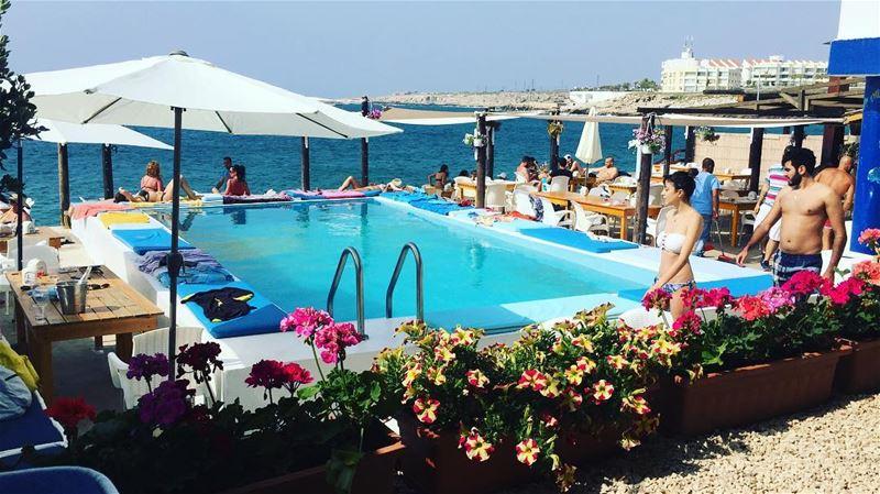 newseason summer summer2018 chezfouad ta7telri7 seafood pool ... (Chez Fouad)