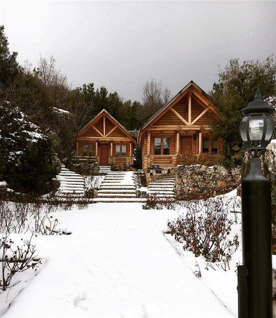 Durante o inverno no Líbano (dezembro-março), é possível visitar não... (Wood Hills Resort)