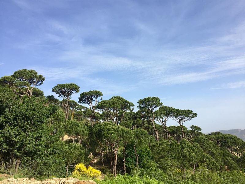 landscape weekendvibes sundayfunday outdoors nature ... (Deïr El Harf, Mont-Liban, Lebanon)