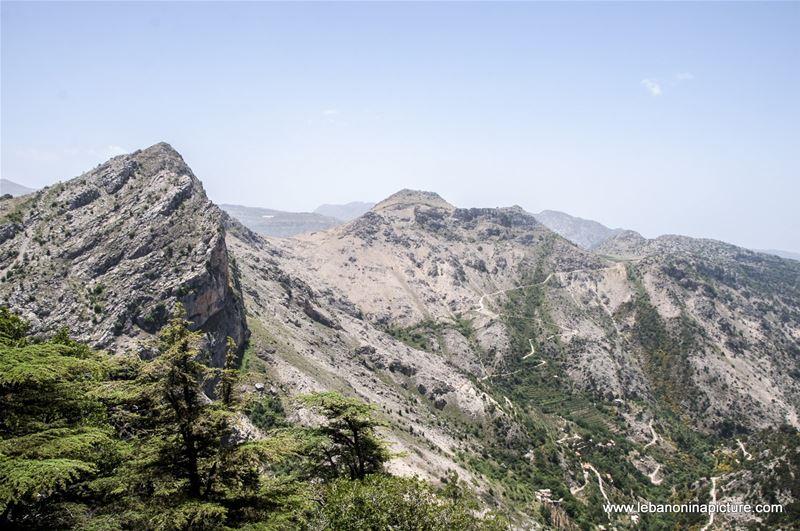 Tannourine Cedar Reserve (Arz Tannourine)