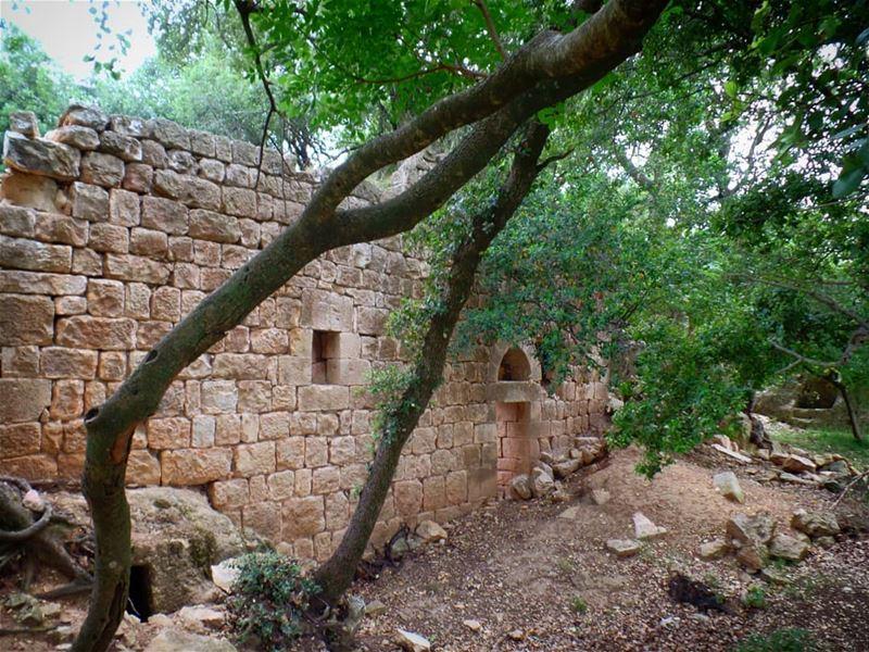 معبد القديسين سركيس وباخوس في بيت غريب: معبد يناهز الألف سنة، بني على قمة ت (`Akkar Al `Atiqah, Liban-Nord, Lebanon)