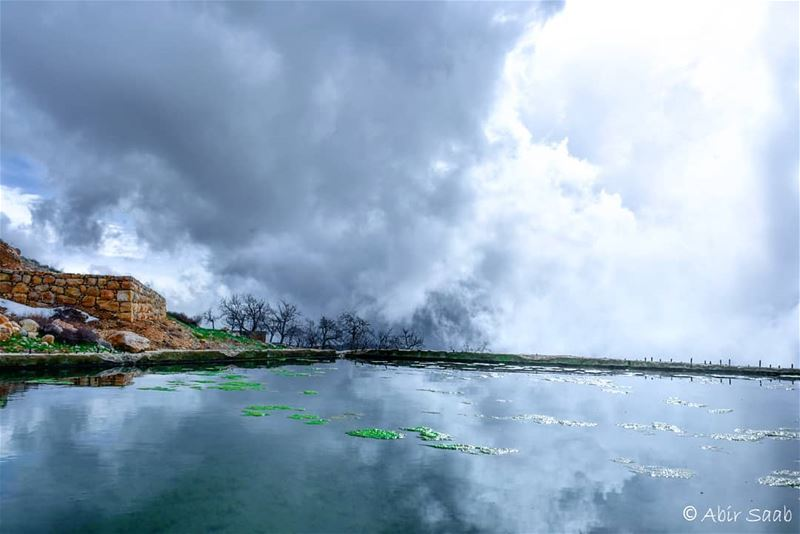 Admire the way colors look different in such a gloomy day.. Different... (Baskinta, Lebanon)