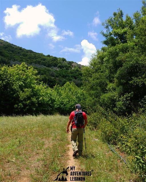 Keep it green 🍃 keepitclean myadventureslebanon lebanon hikinglife ...