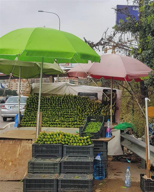 قف!✋ حاجز🌽• ptk_lebanon super_lebanon hd_lebanon ig_lebanon ... (South Governorate)
