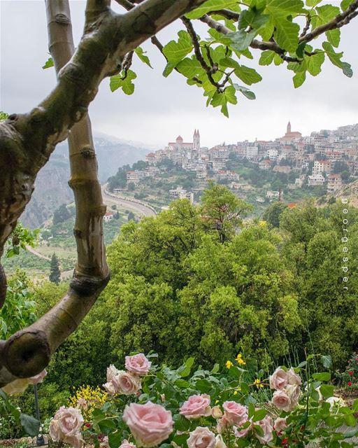 Bcharri Town • Lebanon 🇱🇧..... beautifullebanon livelovebeirut ... (Bsharri, Lebanon)