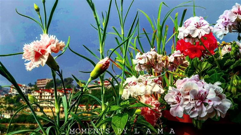 nature naturephotography nature_photo nature_lovers landscape... (Bakhoun, Liban-Nord, Lebanon)
