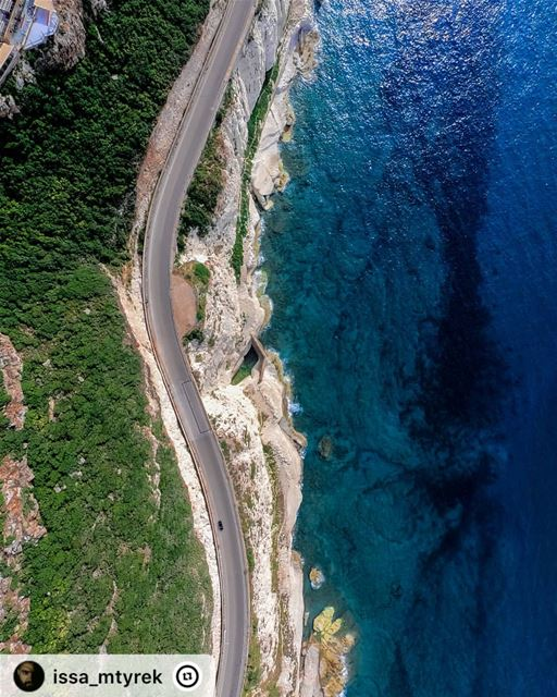 Sometimes the most scenic roads in life are the detours you didn't mean to... (Naqoura)