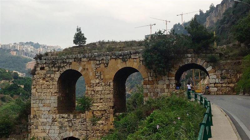 طريق القناطر...🌳(Location: قناطر زبيدة-الحازمية)————————————— new ... (Hazmie, Mont-Liban, Lebanon)