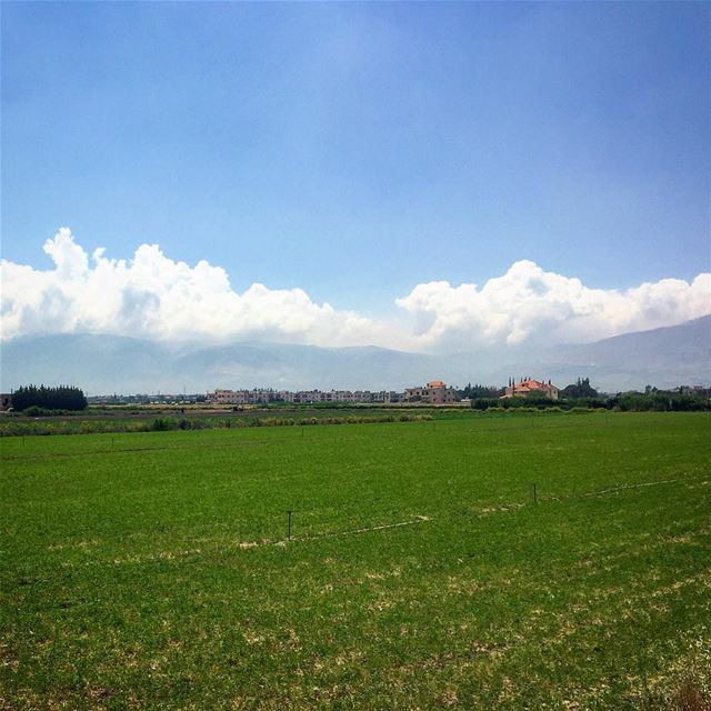 سدح..مدح.. livelovebekaa 💚————————————————— nature greennature sky ... (Beqaa Governorate)