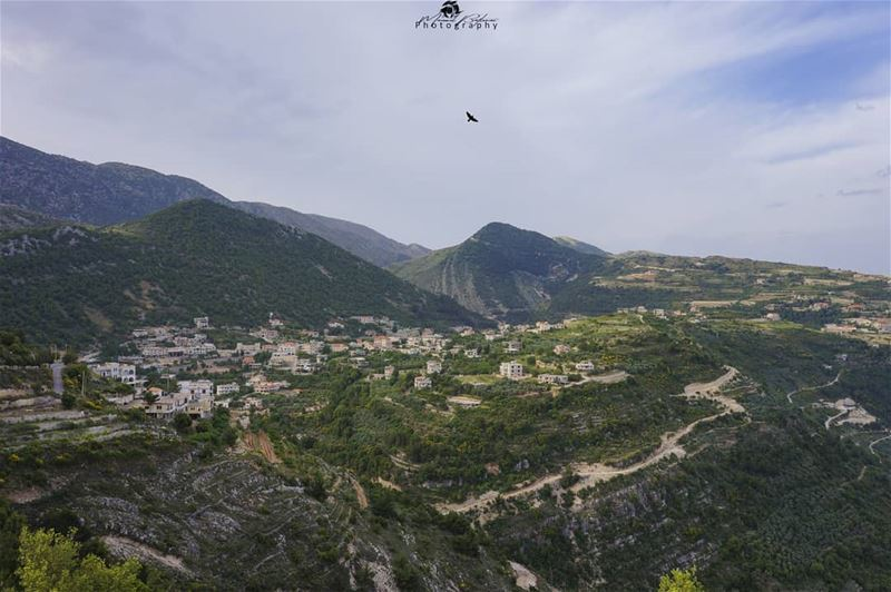 Good morning • • • chouf shoufreserve lebanon beirut livelovelebanon ...