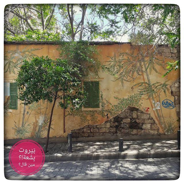 🇱🇧 The wall... بيروت_مش_بشعة بيروت uglybeirut beirut lebanon... (Monot Street)