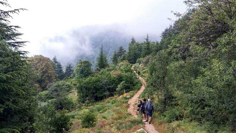 Hiking into heaven .. horshehden thebestinlebanon mycountrylebanon ...