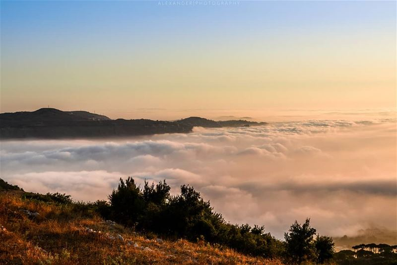 The Golden Hour | Falougha Mountains and a carpet of clouds covering the... (Falougha, Mont-Liban, Lebanon)