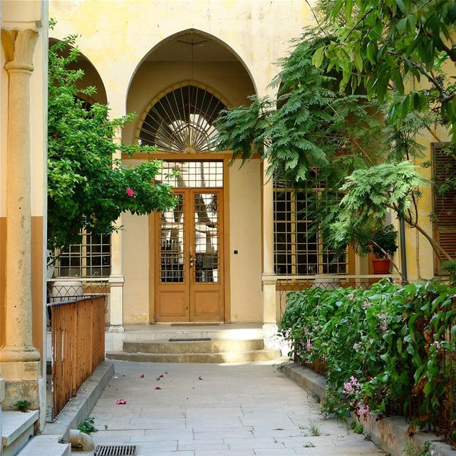 An oasis in the heart of the city...... achrafieh  ashrafieh  ... (Achrafieh, Lebanon)