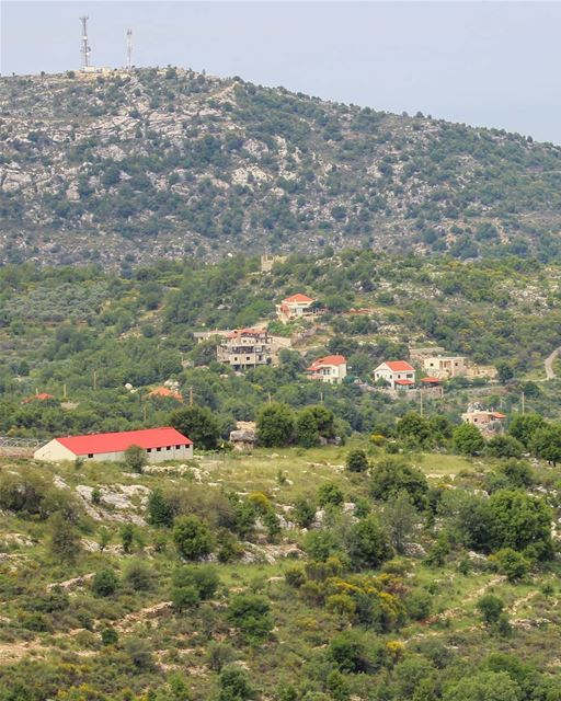 I live for teeny tiny red roofs on a green background 🤷🏻‍♀️❤ have a... (Mount Lebanon Governorate)