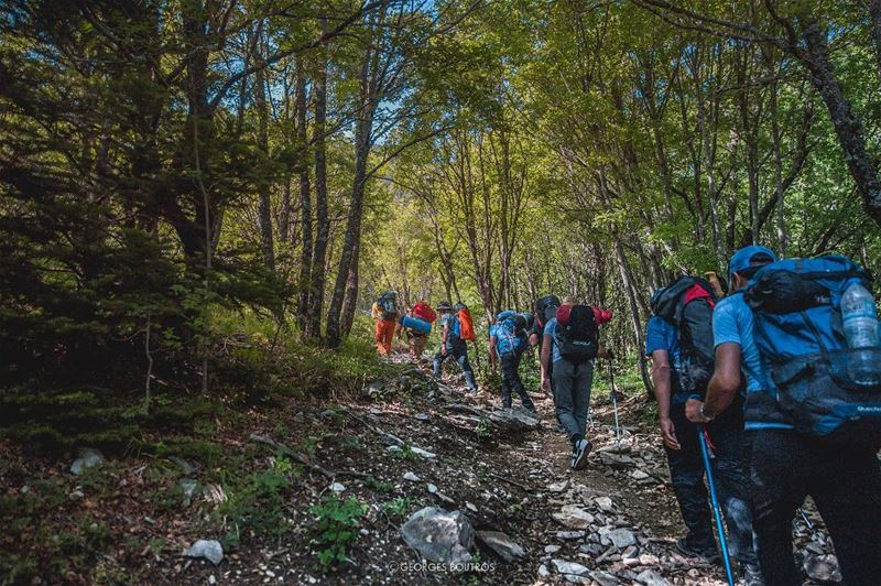 One step at a time 💪🏼⛰-- mountathos hiking wanderlust wonderer ... (Mount Athos)