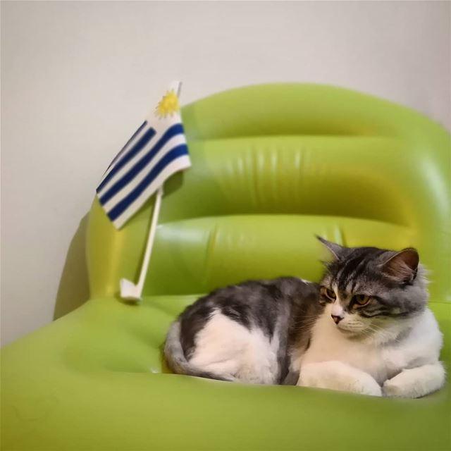 En su silla esperando la llegada de Celeste a Rusia.... Vamos Uruguay! ...