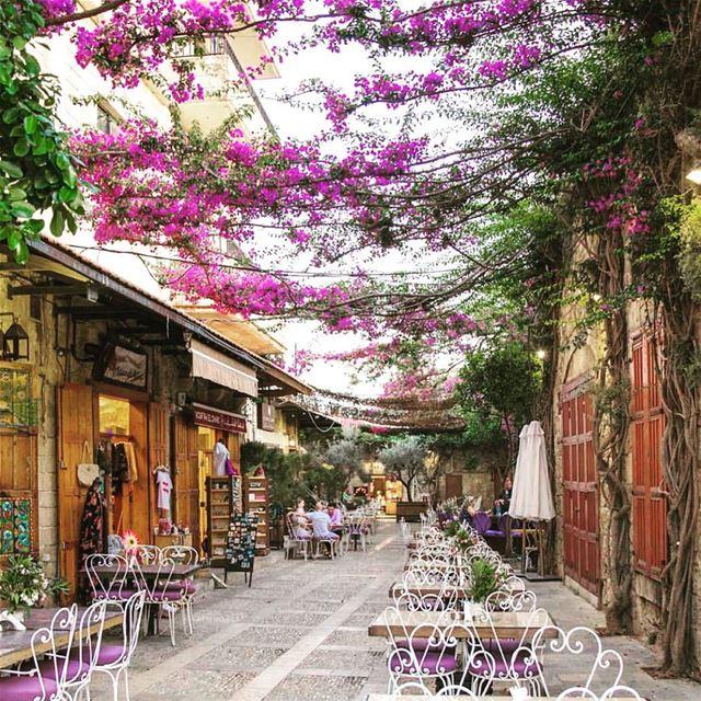 The colors of Byblos livelovelebanon repost @wearelebanon . . . nature... (Byblos, Lebanon)