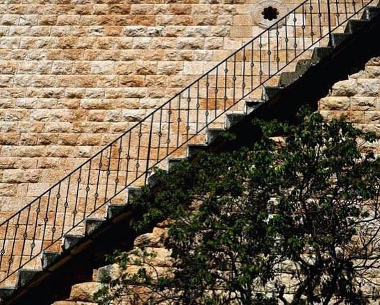 How's your monday going ? ⬆ or ⬇.📍Assia, Batroun district, Lebanon...... (Assia, Liban-Nord, Lebanon)