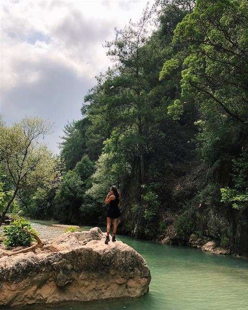 Jabal Moussa Biosphere Reserve (3/3): We could've stayed here for hours. ... (Chouène, Mont-Liban, Lebanon)